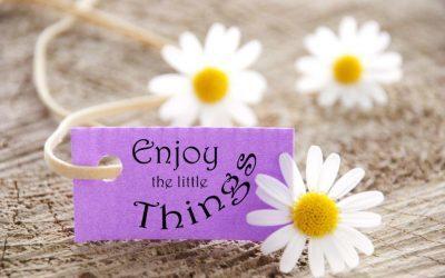 Enjoy Everything You Do