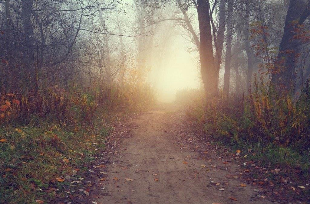 Silence calms your heart