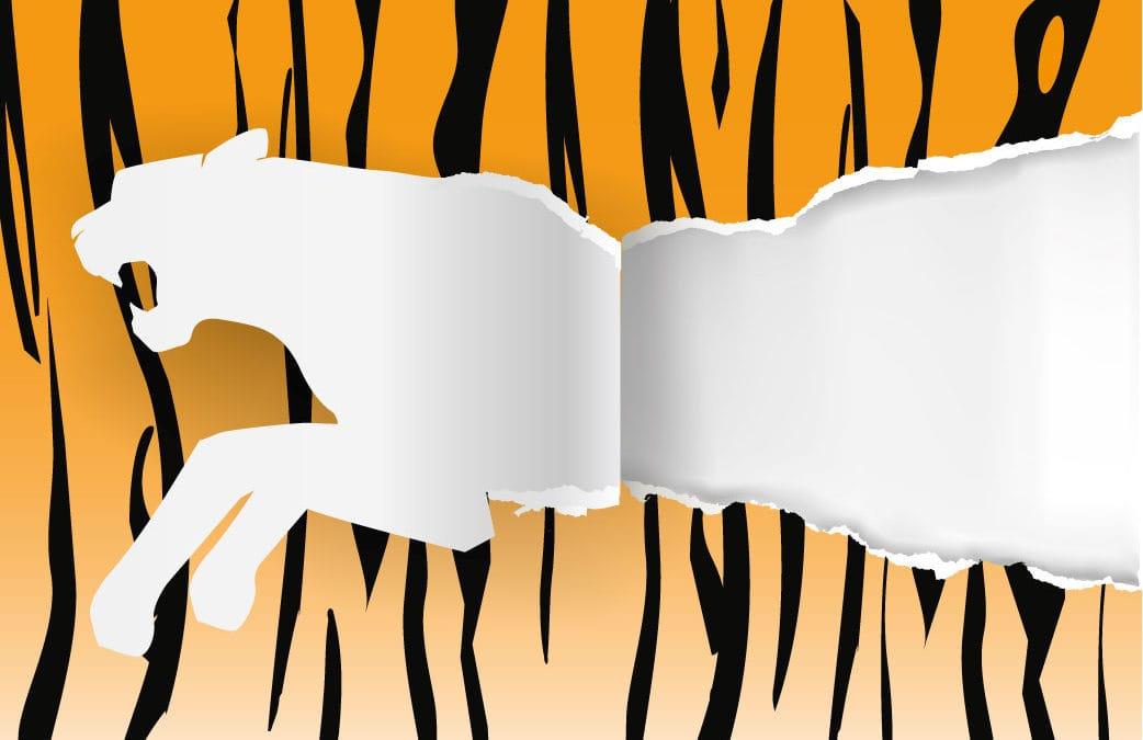 paper tiger Lincoln nebraska paper shredding services | paper tiger shredding hastings nebraska city.