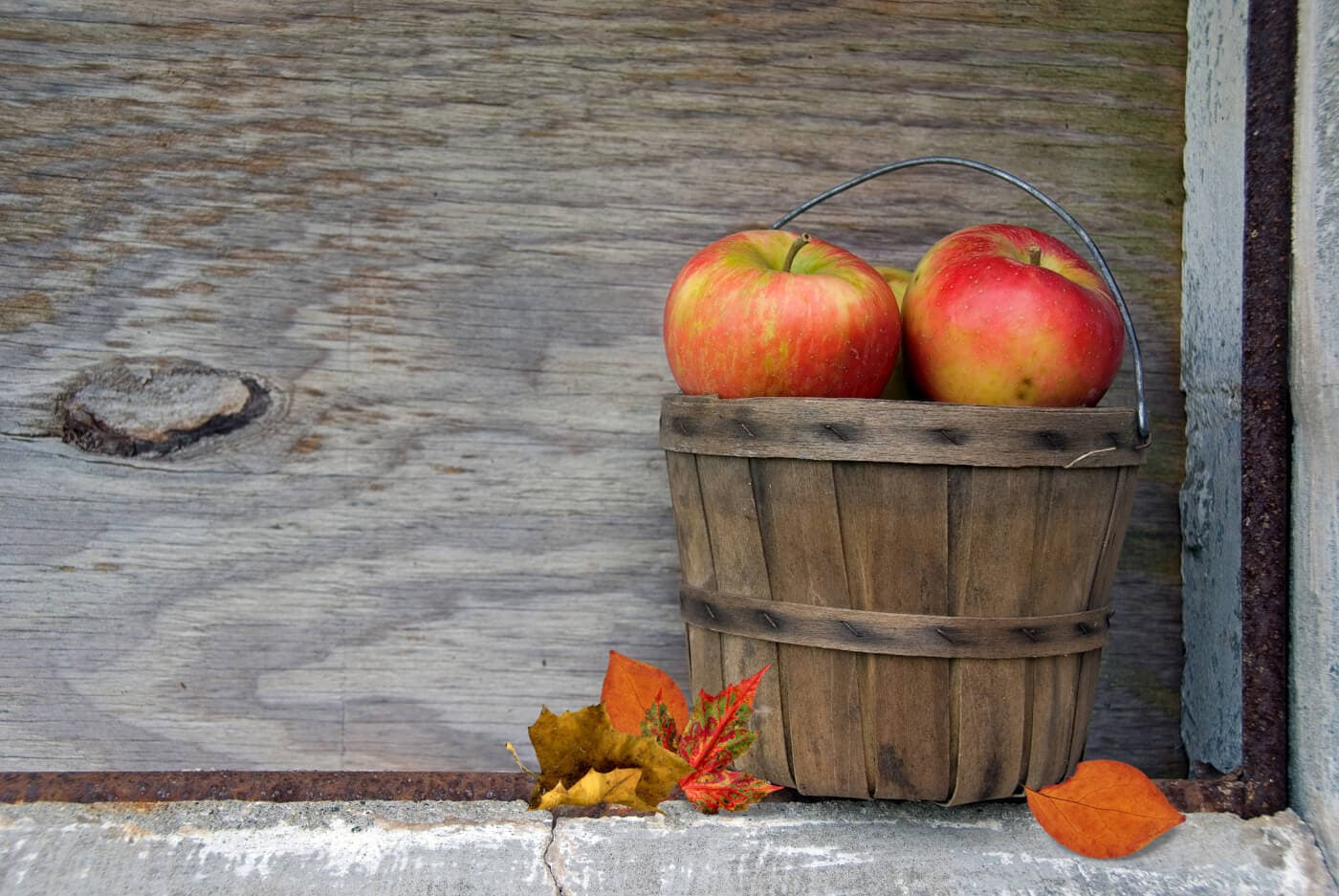Autumn apples with leaves