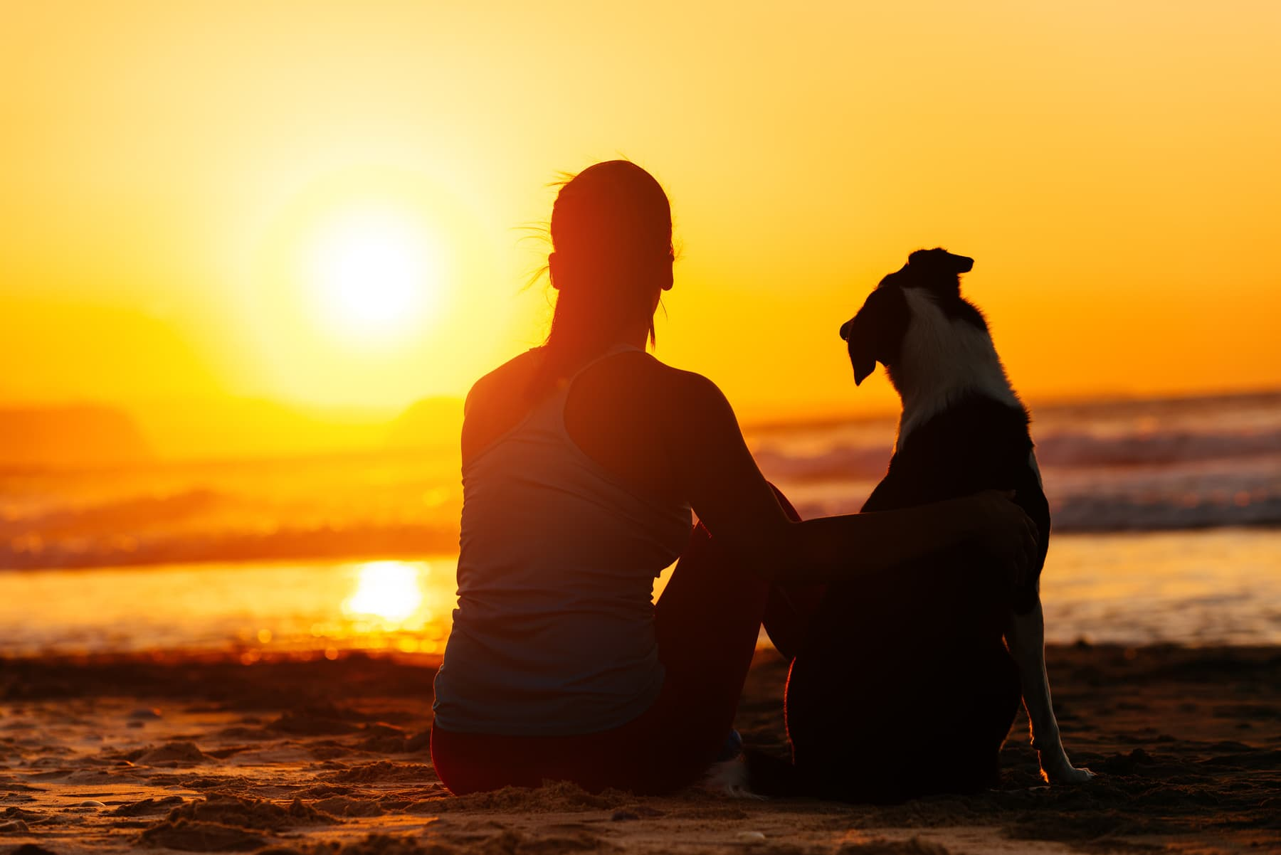 Relaxed woman and dog enjoying summer sunset or sunrise over the sea sitting on the sand at the beach.